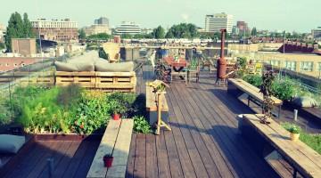 rsz_hotelcasa-nest_rooftop